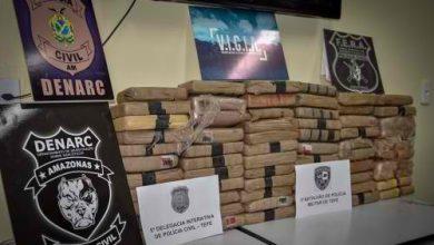 Foto de Em Tefé, Polícia Civil prende quatro pessoas e apreende 70 quilos de maconha do tipo skunk avaliados em R$ 350 mil