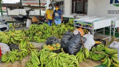 Foto de Idam entrega mais de 5,1 toneladas de produtos agrícolas através do PAA em Tabatinga